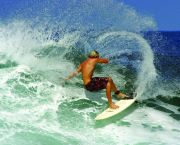 Learn to Surf! - Cavalier Surf Shop