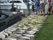 Oregon Inlet Fishing Center, Superb Fishing!!