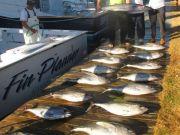 Oregon Inlet Fishing Center, Good Fishing Out of Oregon Inlet