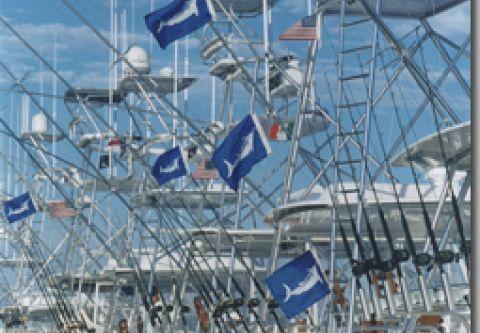 Pirate's Cove Marina, Book a Charter Fishing Trip