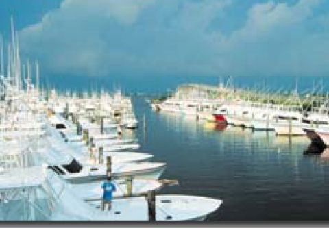 Pirate's Cove Marina, Stock Up at the Ship's Store